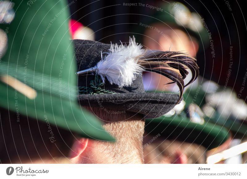 Dreiklang | Tusch-Bläser Trachtenhut Kopf Hut maskulin Blick nach hinten Feste & Feiern Hutfeder Folklore Adlerflaum Dorffest Trachtenzug Volkstracht