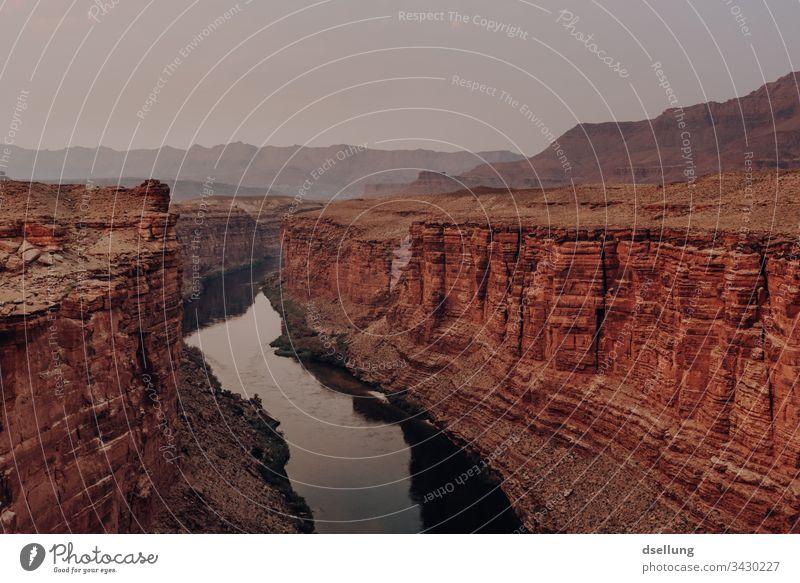 Canyon mit Fluss in der Abenddämmerung Westen Urelemente Ausflug wandern Freiheit Fernweh Erde Stein Kontrast Sommer Berge u. Gebirge Sonnenlicht Tourismus