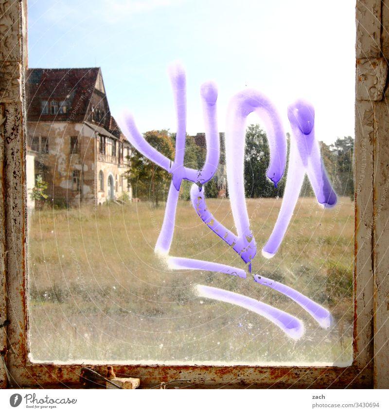 Eine alte Villa durch ein schmutziges Fenster gesehen Raum Vergangenheit Renovieren Mauer Wand Farbfoto Vergänglichkeit Zerstörung kaputt Innenaufnahme Ruine