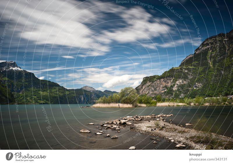 Sturm in Flüelen am Vierwaldstättersee Himmel Natur blau grün Wasser weiß Sommer Sonne Baum Landschaft Wolken Umwelt Berge u. Gebirge Wärme See Felsen