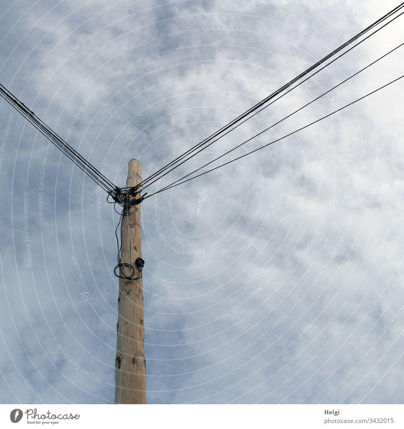 hoher Mast aus Holz mit vielen daran befestigten Stromleitungen vor bewölktem Himmel Strommast Kabel Energiewirtschaft Elektrizität Leitung