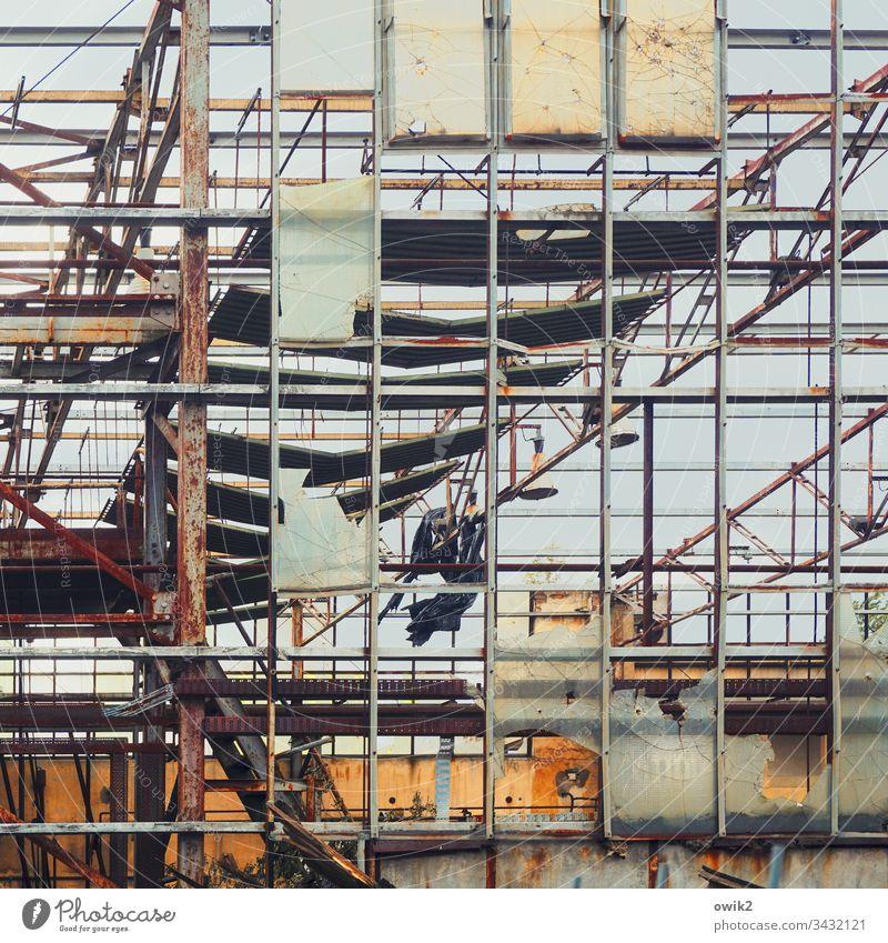 Durchsichtig Abriss Gitter marode alt Gestell Metall Menschenleer Farbfoto Außenaufnahme Wand Strukturen & Formen Verfall Fassade Zerstörung kaputt Nahaufnahme