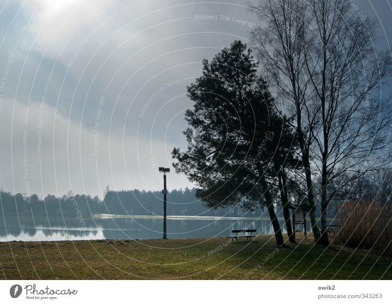 Ökobank Himmel Natur blau Pflanze Baum Sonne Landschaft Erholung ruhig Tier Wolken Wald Umwelt Ferne Frühling See