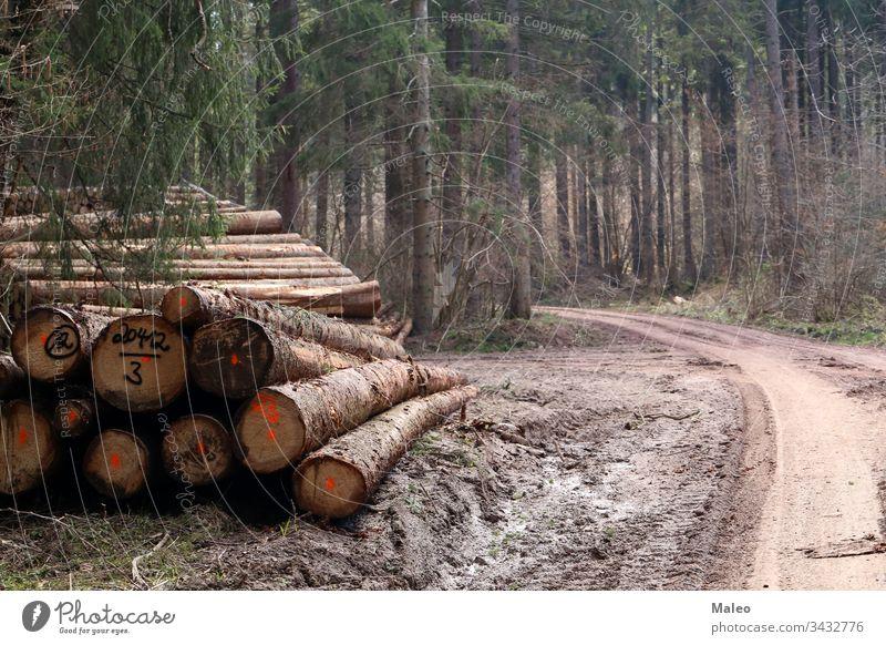Frisch gefällte Bäume im Wald, am Rande einer Forststraße Entwaldung umgebungsbedingt Forstwirtschaft Industrie Landschaft Totholz Abholzung Holz Natur Haufen