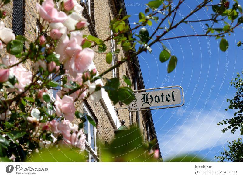 Romantisches Hotel, Rosenstrauch im Vordergrund  Schriftzug HOTEL romantisches Hotel rosa Rosen altes Gebäude Wellness Romantik Ferien & Urlaub & Reisen