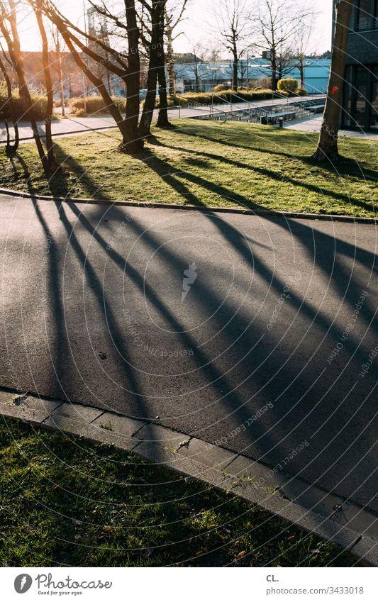im park Park gehweg Schatten Schattenspiel Sonnenlicht Bäume Natur Menschenleer Farbfoto Außenaufnahme Tag Licht Schönes Wetter Baum Wiese ruhig Gras