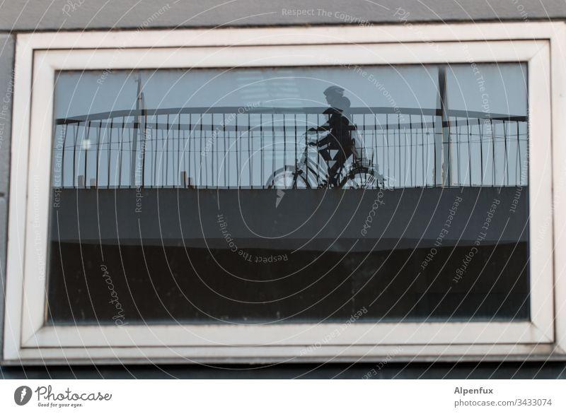 gespaltene Persönlichkeit Fenster Fahrrad Haus Fensterscheibe Fahrradfahren Außenaufnahme Farbfoto Brückengeländer Mensch Verkehrsmittel Tag Wege & Pfade