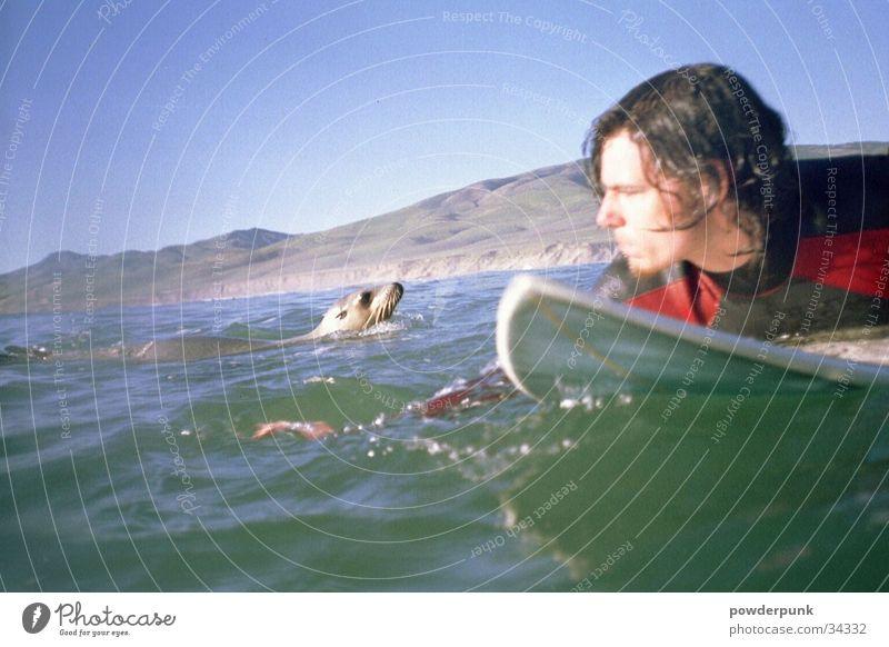 Sharkfood Surfer Meer Sport Wasser Holzbrett Mensch&Tier Surfen