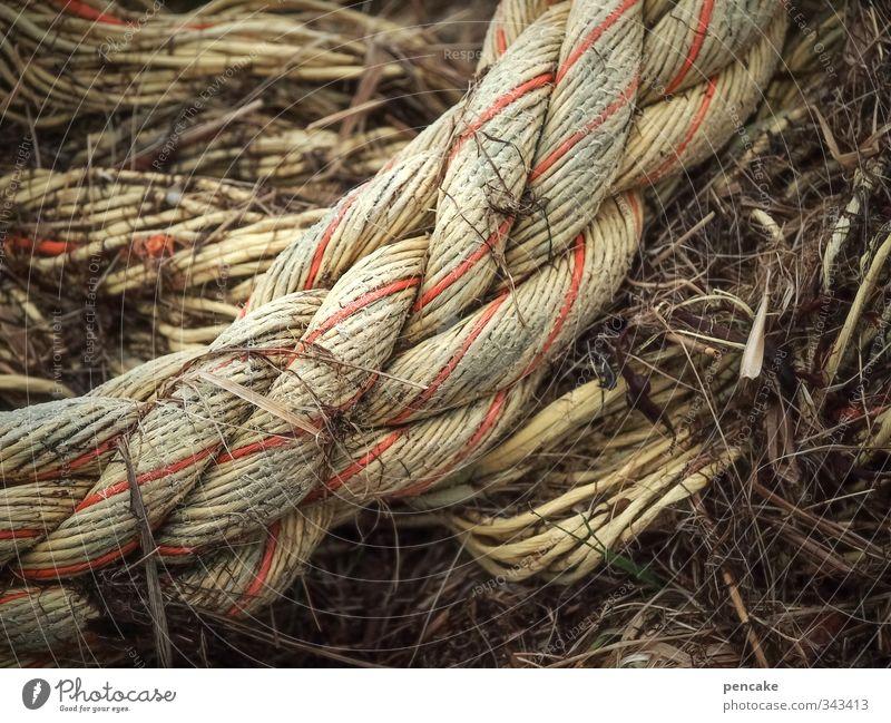 Rømø | come together rot Business authentisch Seil rund stark Zusammenhalt Schifffahrt Nordsee Gesellschaft (Soziologie) Tau Nähgarn Knoten muskulös Ehrlichkeit