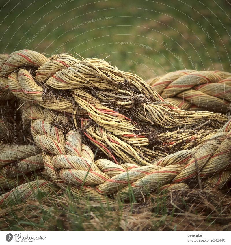 Rømø | morgentau Natur Frühling Gras Küste Erde authentisch Kommunizieren Zeichen Seil Urelemente Sicherheit Sehnsucht Zusammenhalt Nordsee Schifffahrt Rettung