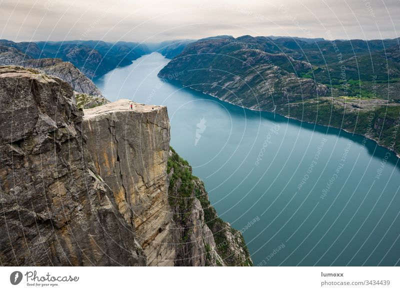 Blick auf den Preikestolen am Lysefjord in Norwegen Fjord Skandinavien Natur Wasser Felsen Küste Steilküste wandern Landschaft Wanderer Norden Europa