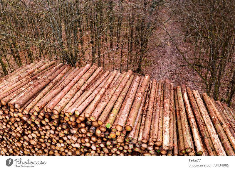 Lagerung von Holzscheiten im Freien von oben Totholz protokolliert Ast hölzern Holzlagerung Wald Baum Bäume Baumstamm Stängel Vorbau Protokollspeicher Textur