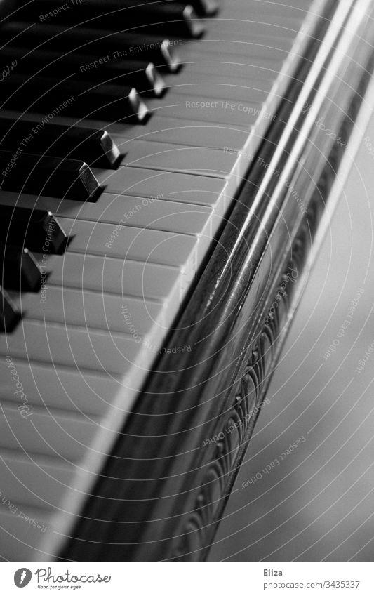 Nahaufnahme eines Klaviers mit seinen Tasten in schwarzweiß Klaviertastatur Tastatur Konzert Textfreiraum rechts Musiker Innenaufnahme Klassik Klavier spielen