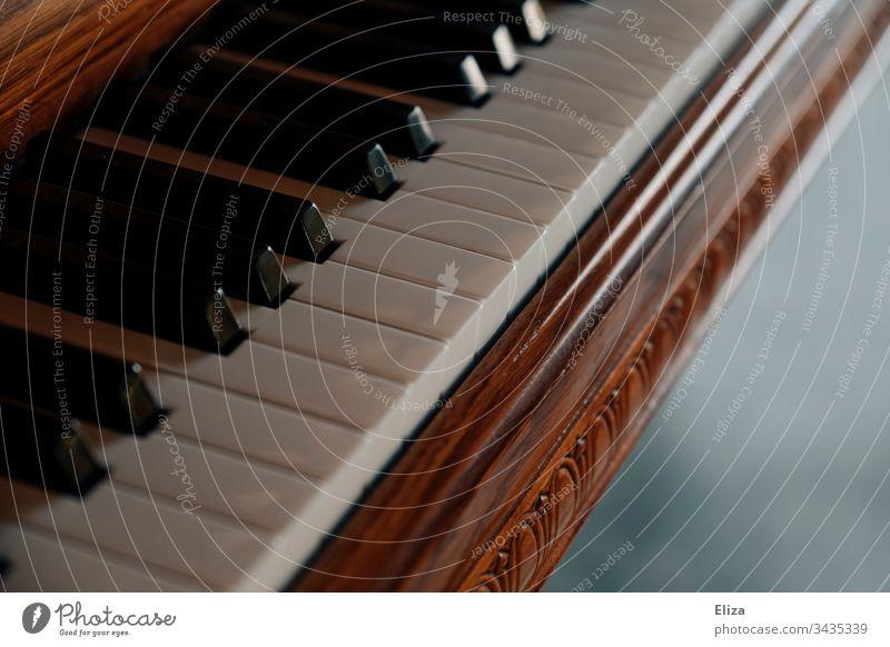 Nahaufnahme eines schönen Klaviers aus Holz und seiner Tasten klavierflügel Klavierspielen musikalisch hübsch Ornamente Musik Musikinstrument Detailaufnahme