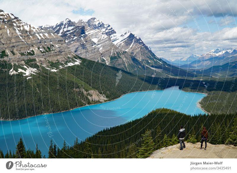 Blick über den Peyto Lake, Banff-Nationalpark Kanada See Rocky Mountains Banff National Park Tourismus Ferien & Urlaub & Reisen Alberta Nordamerika