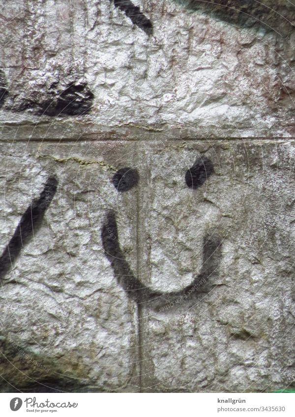 Graffiti lächelndes Gesicht an einer silbrig besprühten Wand Smiley Kunst Straßenkunst Lächeln Freundlichkeit Mauer Zeichen Fröhlichkeit Außenaufnahme Farbfoto