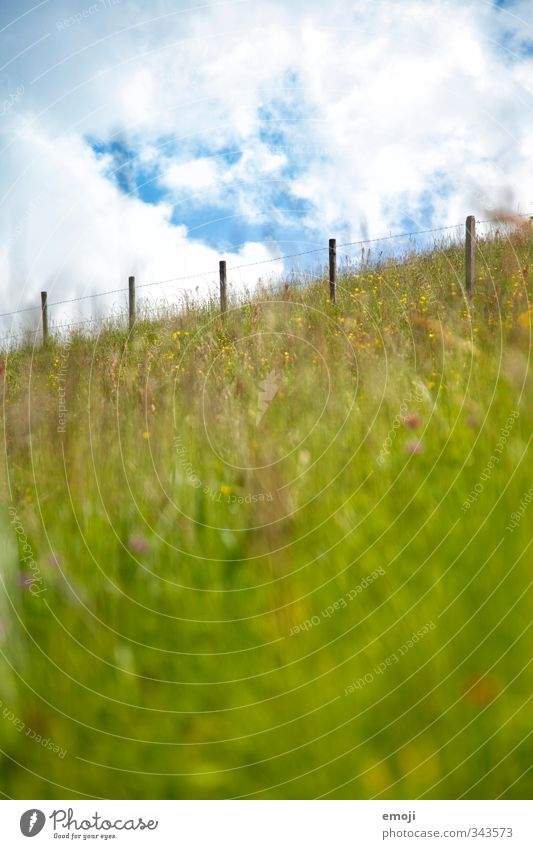 bergauf Umwelt Natur Landschaft Himmel Sommer Schönes Wetter Gras Wiese Feld natürlich grün Zaun Farbfoto Außenaufnahme Menschenleer Tag Schwache Tiefenschärfe