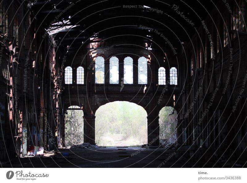 Halle in Halle frühling strauch skurril dunkel alt kaputt sonnenlicht perspektive innenleben tor lost places gemäuer wand historisch spooky altehrwürdig kulisse