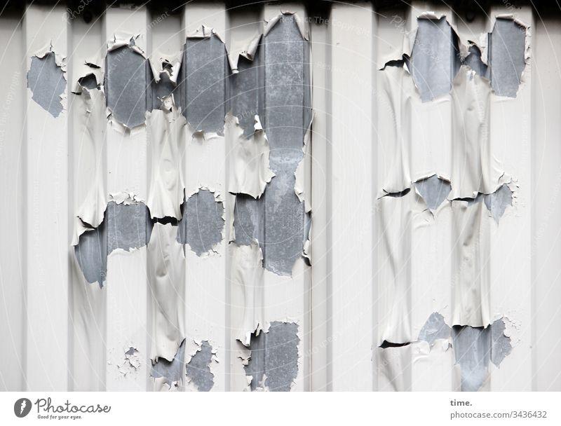 Lebenslinien #133 oberfläche design weiß grau metall mauer wand alt trashig macken druckstellen lack abblättern spundwand maritim lebenslinie