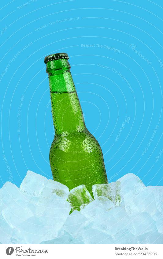Eine Flasche kaltes Lagerbier auf Eiswürfeln auf blauem Hintergrund Bier Glas grün eine Würfel Steine Nahaufnahme vereinzelt Einzelhandel Anzeige tiefstehend