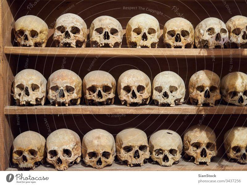 Menschliche Schädel im Kloster des Großen Meteoriten in Meteora, Griechenland Ossarium Kirche Skelett menschlich Innenbereich Europa Knochen Religion katholisch