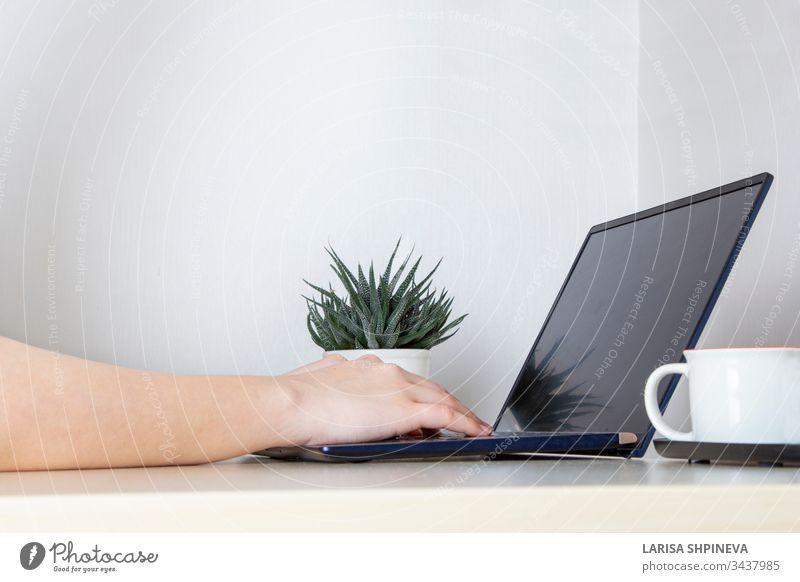 Junge Frau, die von zu Hause aus auf einem weißen Schreibtisch für einen Laptop arbeitet. Mädchen, das in ihrem Büro auf hellem Hintergrund mit einem tragbaren Computer auf der Tastatur schreibt