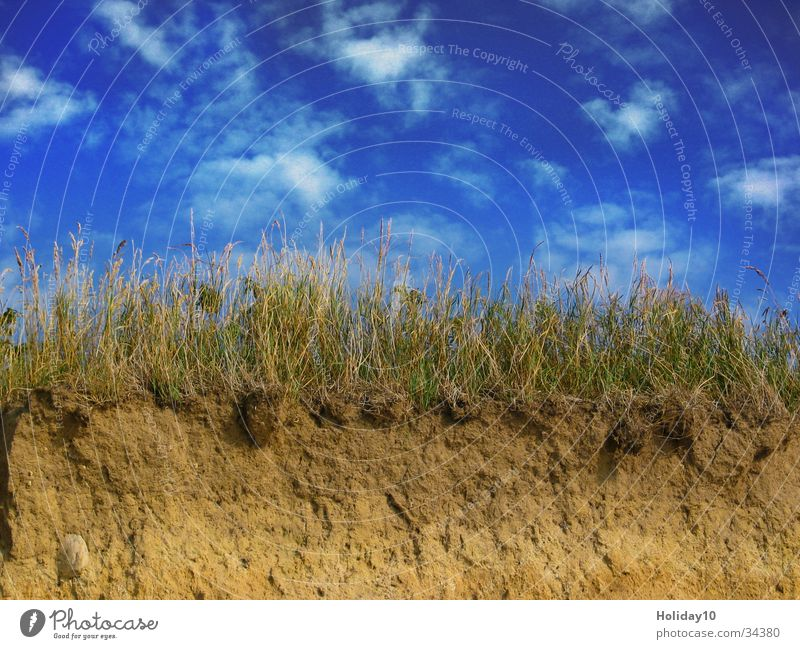 Rügen Wolken Gras Sand Küste Hintergrundbild Abenddämmerung Blauer Himmel