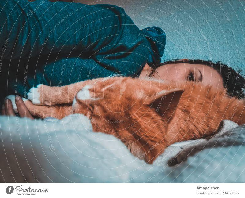 Frau mit Katze Haustier liegen Bett schlafen zuhause zuhause bleiben Kuscheln müde coronavirus Corona-Virus coronakrise Quarantäne Wochentag Liebe trösten