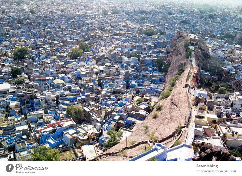 #400 - blue city II Umwelt Wetter Schönes Wetter Baum Hügel Felsen Jodphur Rajasthan Indien Asien Stadt Stadtzentrum überbevölkert Haus Hütte Bauwerk Gebäude