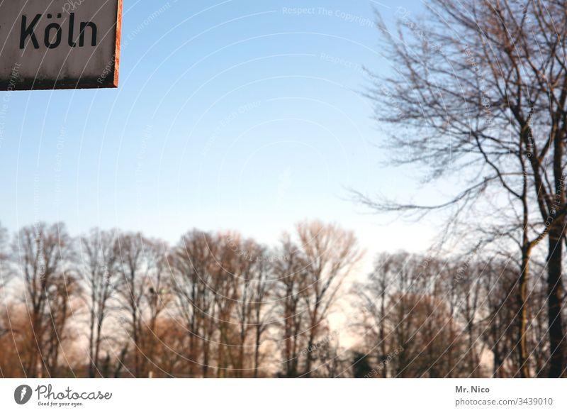 Köln Himmel Stadt Wald Bäume Schönes Wetter Umwelt Sonnenlicht Baum Landschaft Schilder & Markierungen Hinweisschild Heimat Schriftzeichen NRW Kölsch
