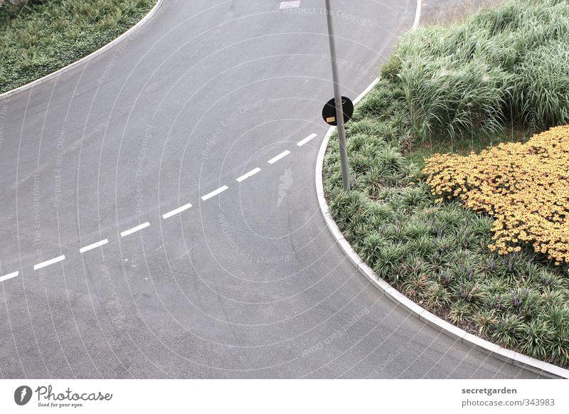was befindet sich hinter der nächsten biegung? Sommer Verkehr Verkehrswege Straße Straßenkreuzung Wege & Pfade Wegkreuzung rund grau grün Markierungslinie