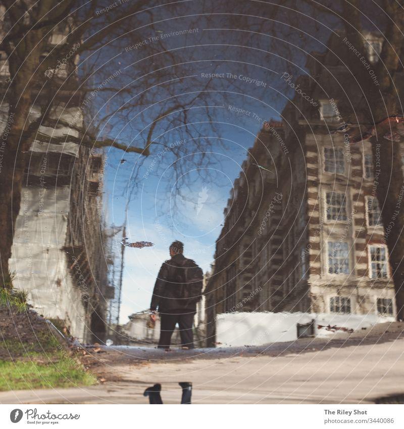 Eine kleine Wasserpfütze zeigt einen Mann, der durch London läuft, mit klassischen Gebäuden um ihn herum und einem sich spiegelnden Baum zur Linken. Architektur