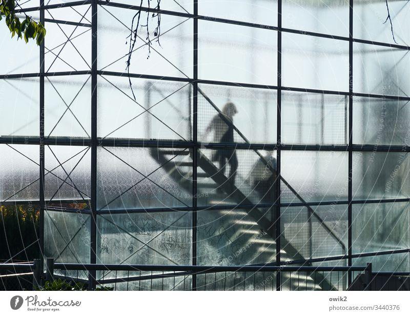 Absteige Aussichtsturm Glas gläsern durchscheinend Silhouette eckig Treppe absteigen Schatten Sonnenlicht abstrakt