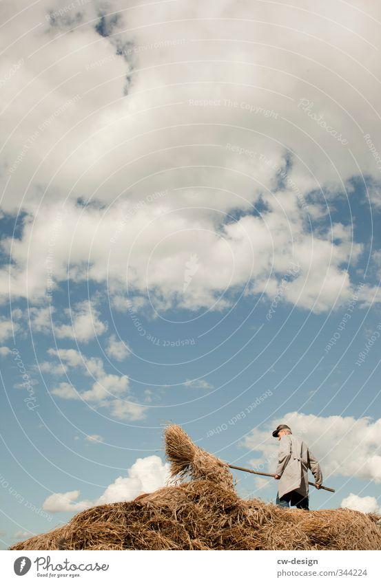 Erntezeit Mensch Natur Mann alt Sommer Wolken Erwachsene Umwelt Senior Leben Garten Arbeit & Erwerbstätigkeit Feld maskulin Freizeit & Hobby Schönes Wetter
