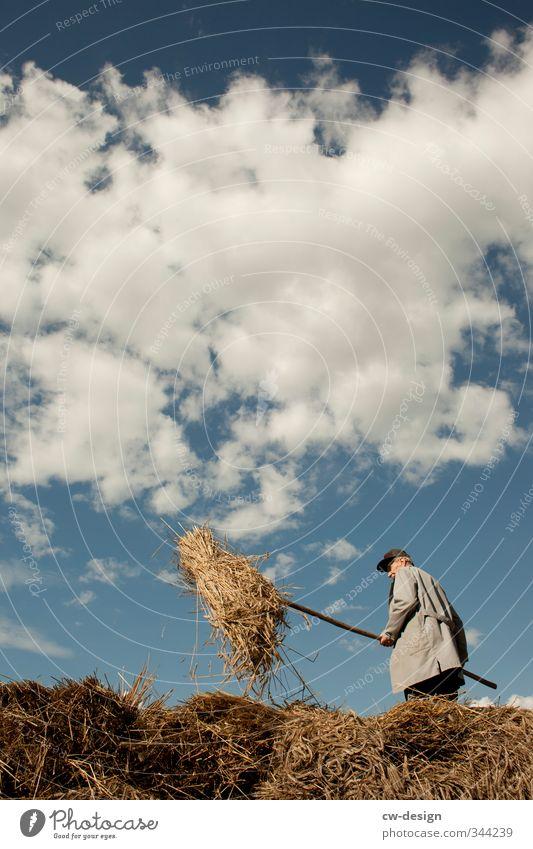 Erntehelfer Mensch Himmel Natur Mann Landschaft Wolken Erwachsene Leben Senior Freizeit & Hobby maskulin Feld stehen Schönes Wetter 60 und älter Vergänglichkeit