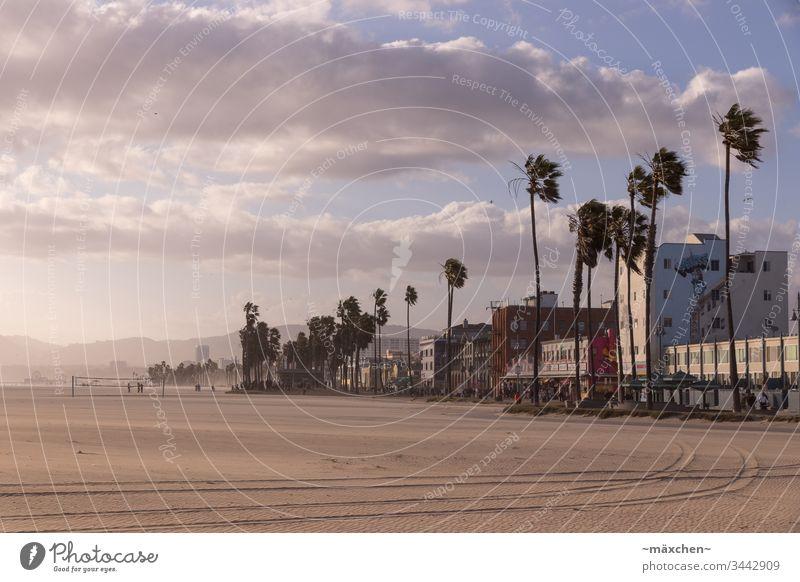 Venice Beach Los Angeles Kalifornien Ferien & Urlaub & Reisen Außenaufnahme Strand USA Himmel Wolken blau Tourismus Palme Sonnenuntergang sonnig Erholung Häuser