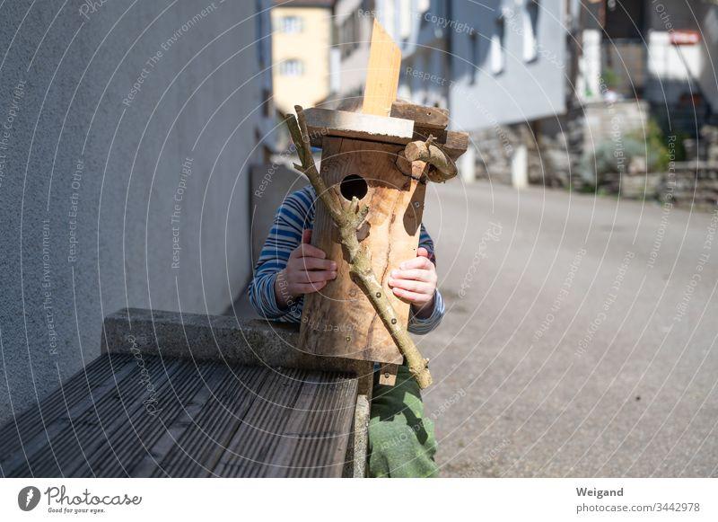 Nistkasten Vogel Umweltschutz Basteln Sohn Haus Freizeit & Hobby Kindheit Holz Frühling
