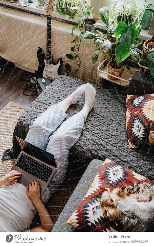 Zu Hause bleiben Arbeiten zu Hause heimwärts Laptop Hund Boho Innenbereich
