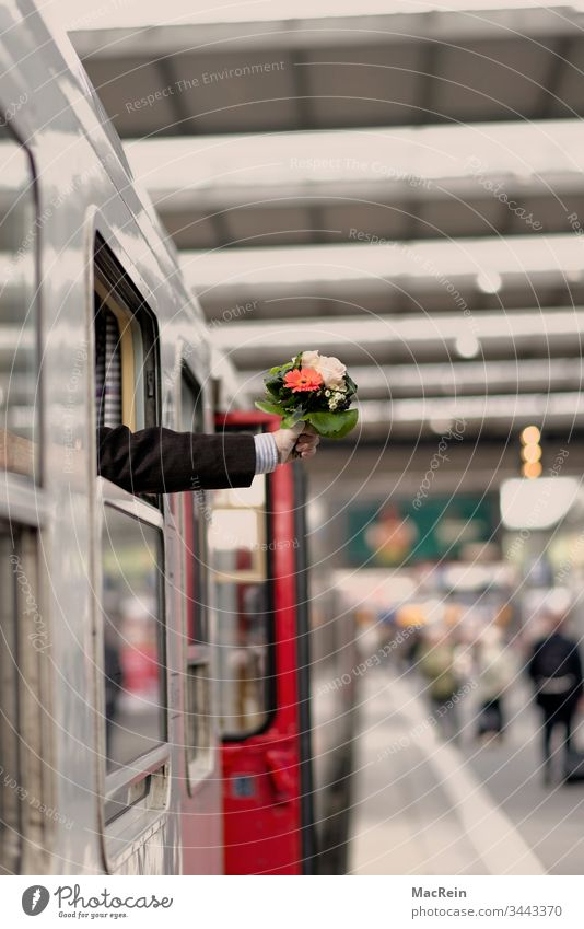 Ankunft Bahnhof bahnhof bahnsteig begrüßung blumenstrauß empfang ankunft abholen arm empfangen hauptbahnhof reise transport überrascht überraschung