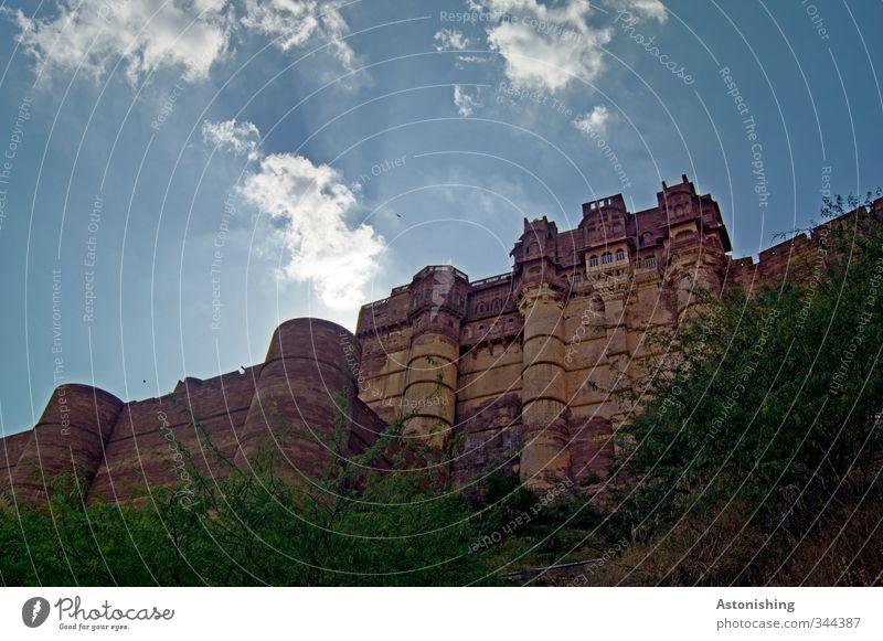 castle Umwelt Natur Himmel Wolken Sonne Sonnenlicht Sommer Wetter Schönes Wetter Pflanze Baum Sträucher Jodphur Rajasthan Indien Asien Stadt Palast