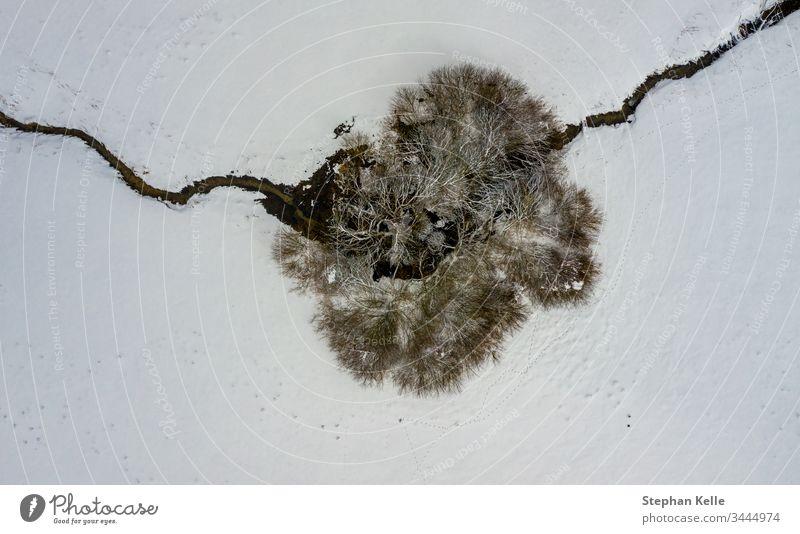 Luftperspektive auf einen einzelnen Baum und ein überquerendes Flüsschen in einer winterlichen Draufsicht. Winter Schnee Single Fluss Bach allein Textfreiraum