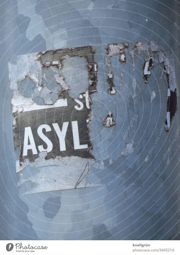 """Detailaufnahme eines kaputten Aufklebers """"ASYL"""" Asyl Kommunizieren Wort Buchstaben Typographie Schriftzeichen Lateinisches Alphabet Großbuchstabe Letter Sprache"""