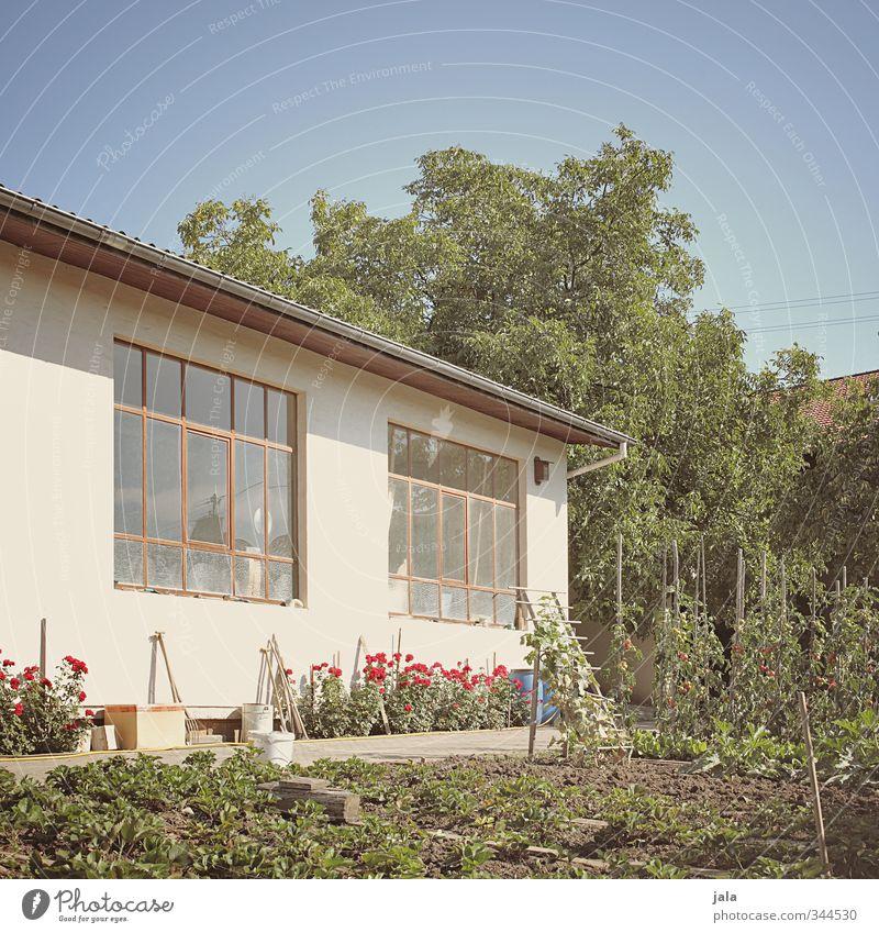 gärtchen Himmel Natur Sommer Pflanze Baum Blume Haus Gebäude Garten natürlich Schönes Wetter Bauwerk Grünpflanze Nutzpflanze