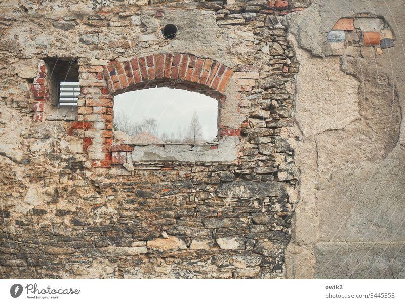 Abrissromantik Mauer Wand Fassade alt Abrisshaus Luke Farbfoto Menschenleer Haus Tag Fenster Gebäude trist Detailaufnahme Steine Steinwand schadhaft