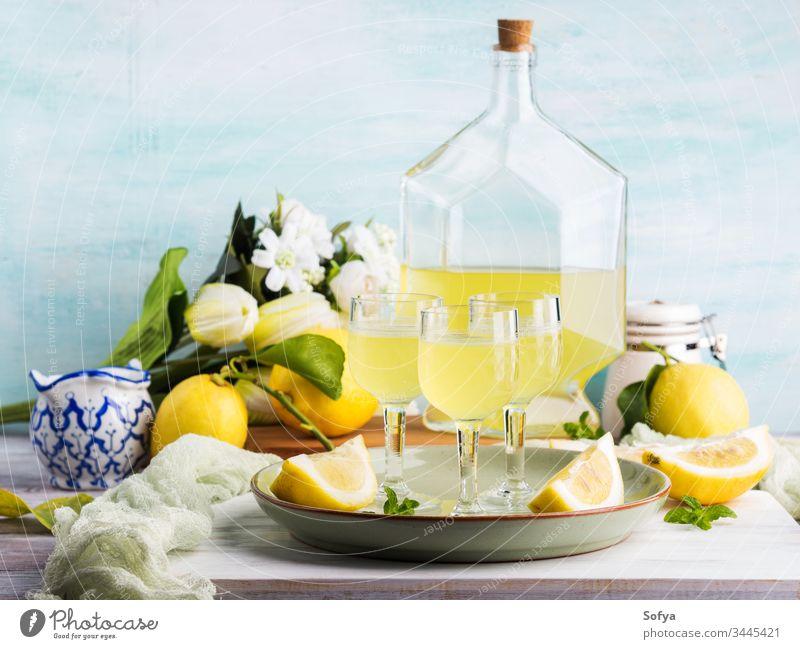 Hausgemachtes Limoncello in Stielgläsern limoncello trinken Glas Italienisch Zitrone Alkohol Getränk Cocktail kalt Lebensmittel Aperitif verdauungsfördernd