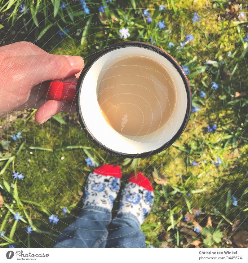 Hand hält Kaffeetasse, Blumenbeet mit blauen Blumen, bunte Socken, Vogelperspektive Kaffeebecher Becher Natur Kaffeepause rot grün weiß Kaffeetrinken Tasse