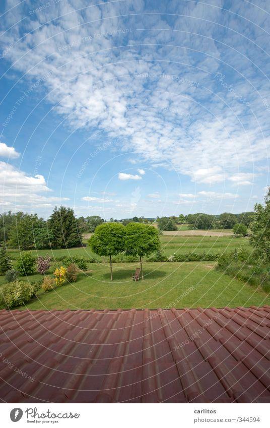 Die weiteren Aussichten: Umwelt Natur Landschaft Himmel Horizont Sonnenlicht Sommer Schönes Wetter Pflanze Baum Gras Sträucher Dach Klima blau Grünpflanze rot
