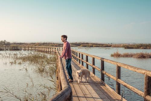 Mann und Hund schauen zum Horizont in einer natürlichen Umgebung von Lagune und Pier - Sonnenuntergang am Wochenende mit Welpen Naturschutzgebiet