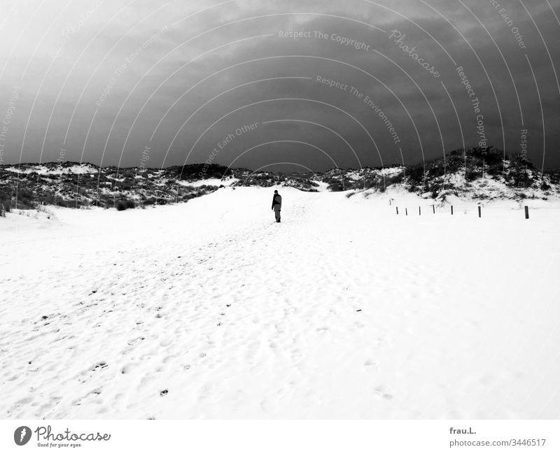 """""""Belgien"""", hatte sie gesagt, """"an die Küste"""", und er hatte ok genickt, doch jetzt, da er sich auch noch in diesen öden schneebedeckten Dünen verlaufen hatte, verflucht er sich endgültig dafür."""