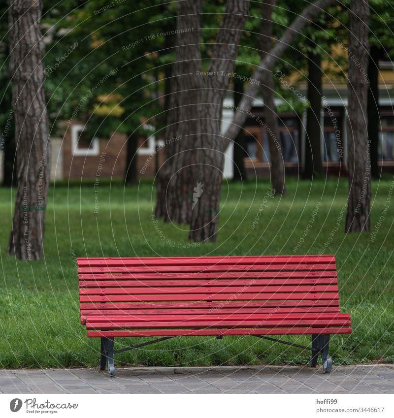 rote Bank im Park vor grünem Rasen Sitzbank Sitzgelegenheit Pause ruhig Erholung Menschenleer Einsamkeit Wiese Schatten Ferien & Urlaub & Reisen Tag sitzen Gras